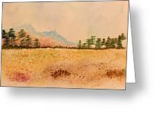 Meadow Wildflowers - Watercolor Greeting Card