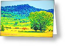 Meadows And The Cedar Breaks Greeting Card