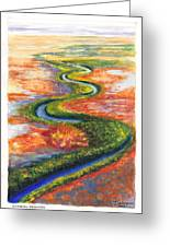 Meandering River In Northern Australian Channel Country Greeting Card