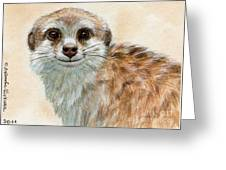 Meerkat 762 Greeting Card