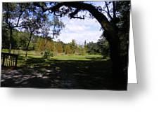 Memorial Trail Color Greeting Card