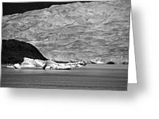Mendenhall Glacier Bw Greeting Card