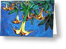 Mendocino Angel Trumpet Greeting Card by Sheila Tajima