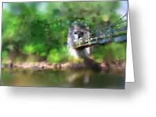 Menomonee River Footbridge  Greeting Card