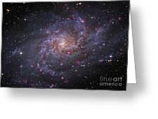 Messier 33, Spiral Galaxy In Triangulum Greeting Card by Robert Gendler