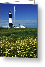 Mew Island, County Down, Ireland Greeting Card