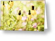 Mexican Hat In Yellow Greeting Card