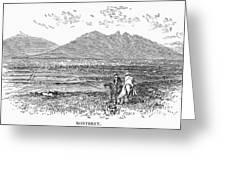 Mexico: Monterrey, C1846 Greeting Card