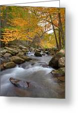 Mid Stream II Greeting Card