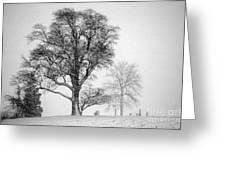 Mid Winter- Guardian Tree Greeting Card