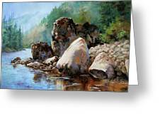 Middle Fork Salmon River Greeting Card