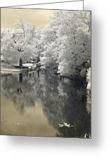 Middle River In Infrared Greeting Card