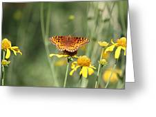 Migrating Butterfly Ser2 Greeting Card