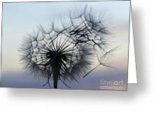 Wind Blown 1 Greeting Card