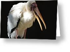 Milky Stork Greeting Card