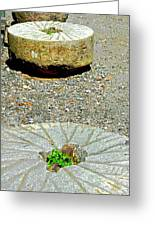 Mill Stones Greeting Card