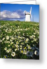 Millisle, County Down, Ireland Greeting Card