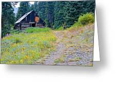Miners Cabin  Greeting Card