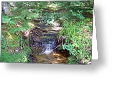 Mini Waterfall At Lower Tahquamenon Falls Park Greeting Card