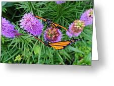 Mirror Image Greeting Card