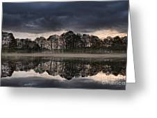Mirrored Trees Greeting Card