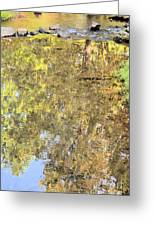 Mirroring Autumn Greeting Card