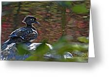 Missy Wood Duck Greeting Card