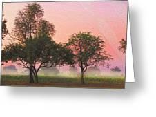 Mist Morning Sunrise Greeting Card