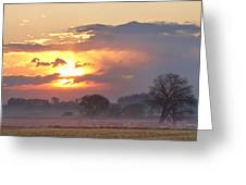 Misty Country Sunrise  Greeting Card