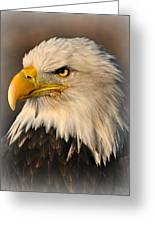 Misty Eagle Greeting Card