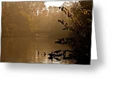 Misty Lake Greeting Card