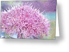 Misty Lilac Morning Greeting Card