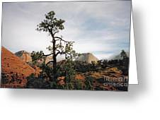 Misty Morning In Zion Canyon Greeting Card