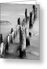 Misty Wooden Posts Greeting Card