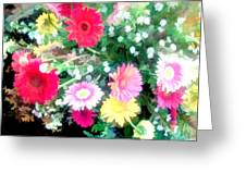 Mixed Asters Greeting Card