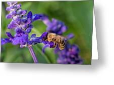 Mmmm Honey Greeting Card