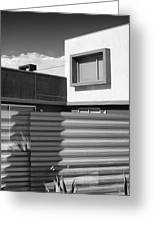Modern Morrison Bw Palm Springs Greeting Card