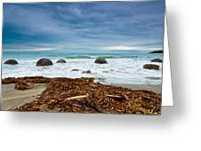 Moeraki Boulder East Coast Of South New Zealand Greeting Card