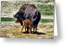 Mommy N Me Greeting Card