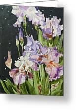 Mom's Night Iris Greeting Card