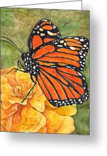 Monarch On Marigold Greeting Card