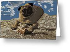 Mongo With Texture Greeting Card