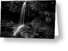 Monochrome Splash Greeting Card