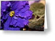 Monster Violet Greeting Card