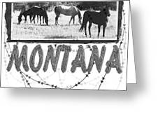 Montana Horse Design Greeting Card