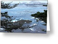 Monterey Collection #9 Greeting Card