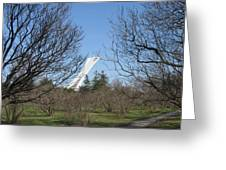Montreal Olympic Stadium Greeting Card