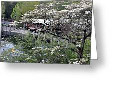 Montreat In Spring Greeting Card