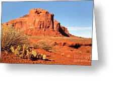 Monument Valley Cactus Greeting Card