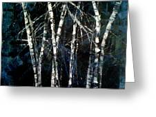 Moods Of Winter Greeting Card